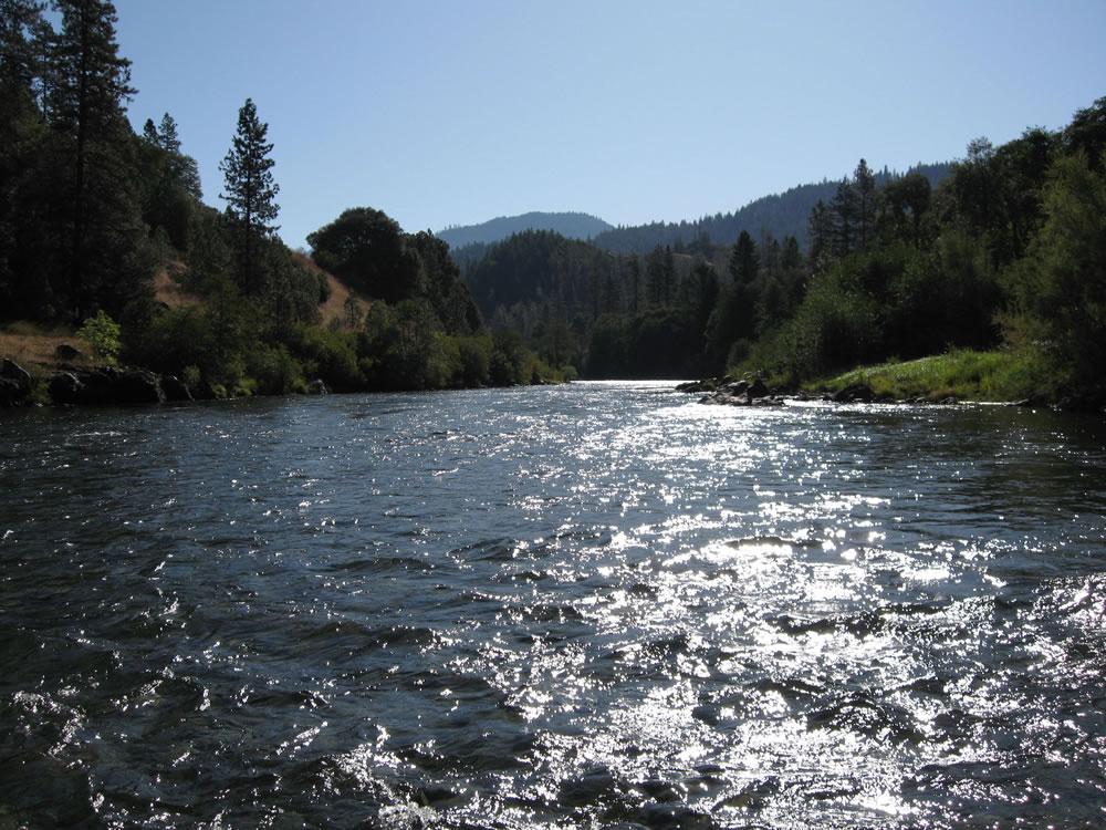 Trinity river multimedia gallery for Trinity river fishing spots